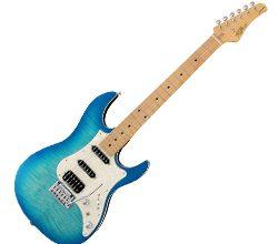 フジゲンのギター買取
